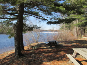 Get out and explore the Massachusetts State Parks with the Morse Institute Library!